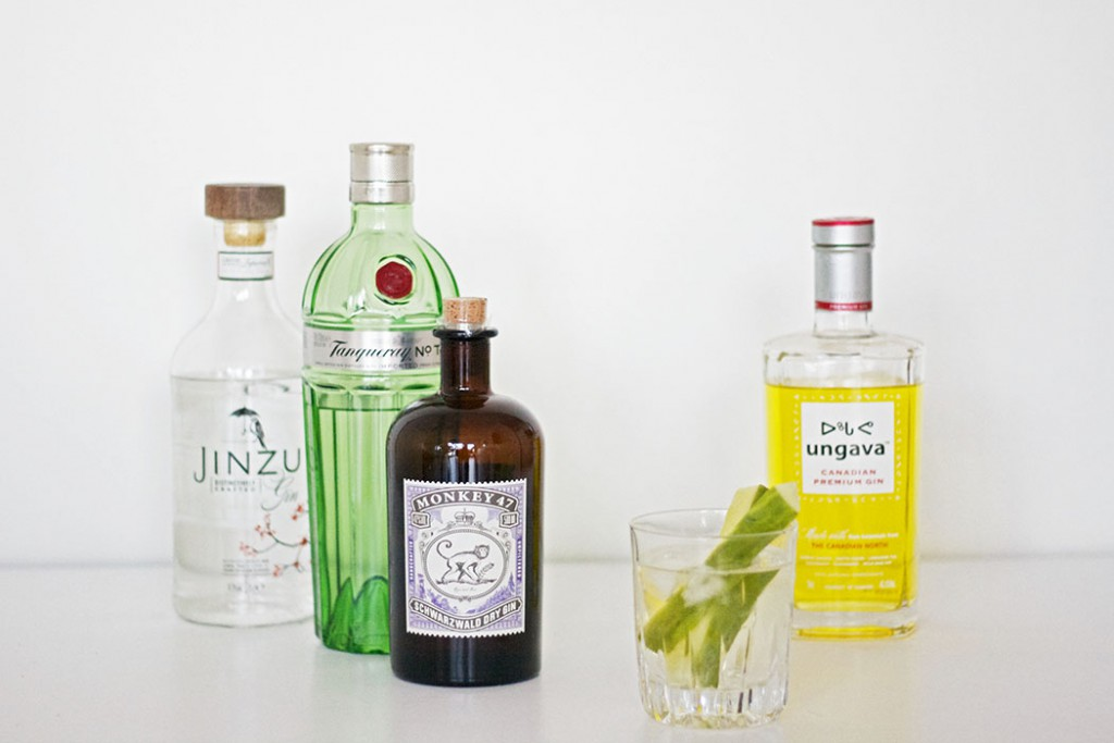 Gin and Tonic_Gin