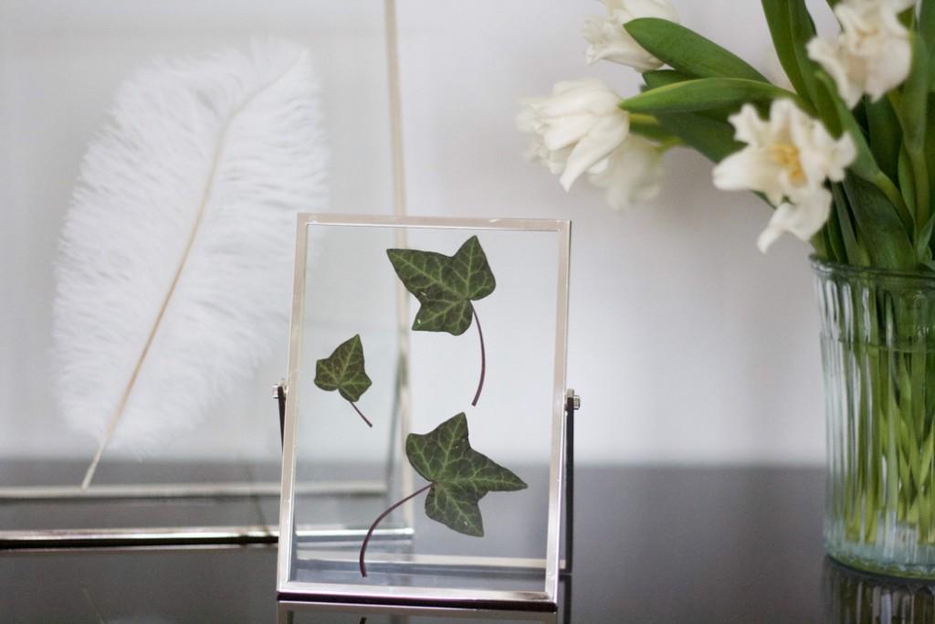 Doubleglass Frames