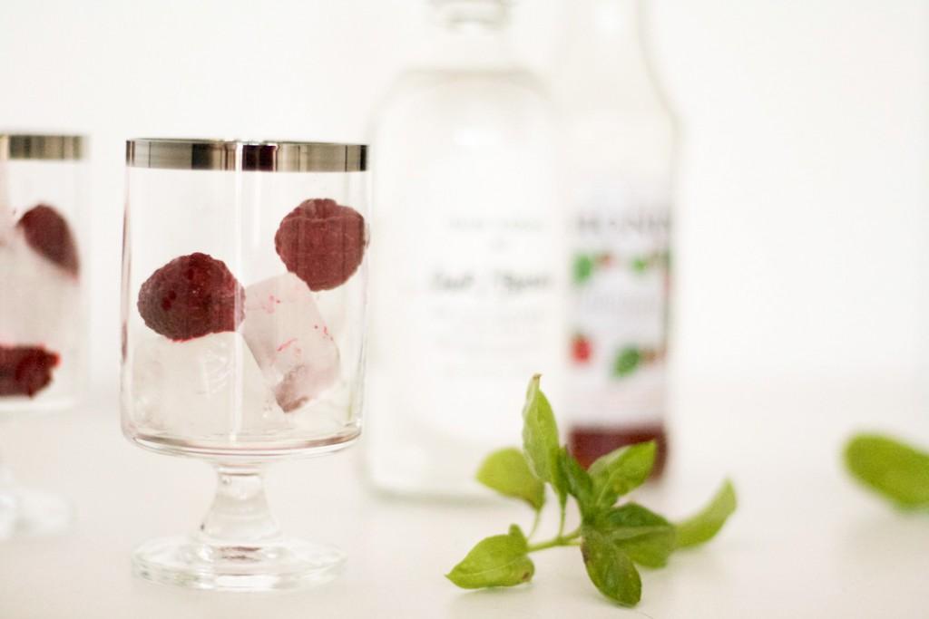 Raspberry Cocktail-2