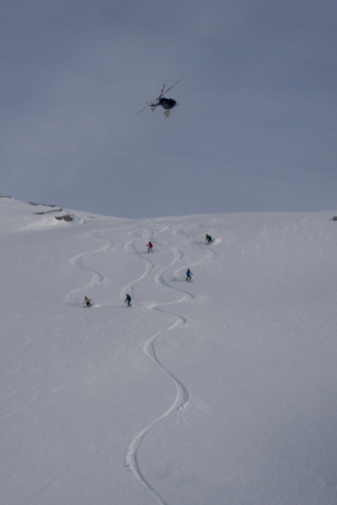Team Skiing Heli Skiing