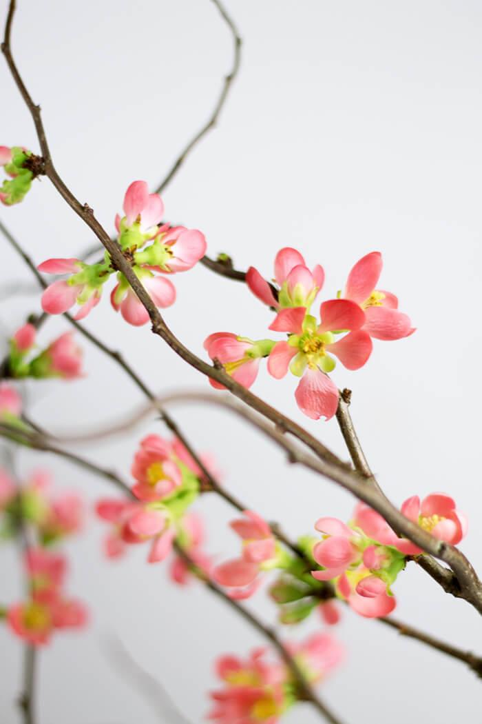 Blüten Fotoshooting Props - DIY Blog lindaloves.de Boxen für mehr Ordnung